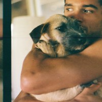 hawaii animal rescue foundation (HARF)