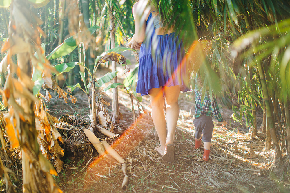 raising your children on maui