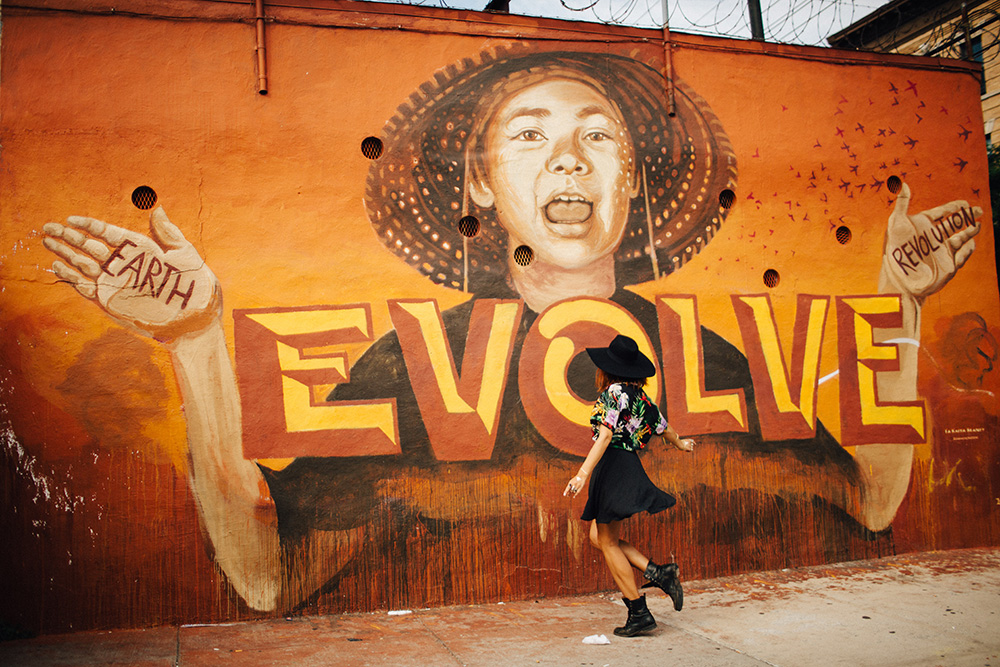 evolve street art by LMNOPI in bushwick photographed by cadencia photography.