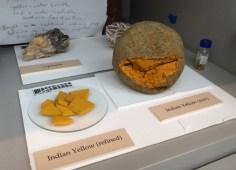 Exemplares crus de Amarelo Índia, feitos a partir da urina de vacas que só comiam folhas de mangueira.