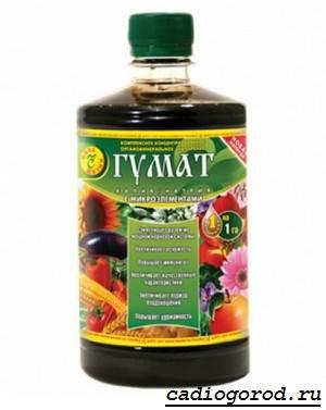 Гумат-калия-удобрение-Состав-и-применение-гумата-калия-2