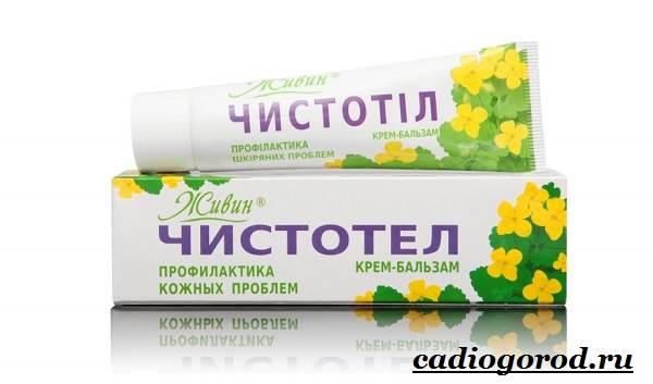 Чистотел-растение-Описание-особенности-и-виды-чистотела-11