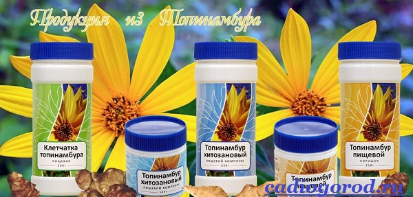 Топинамбур-растение-Выращивание-топинамбура-Уход-за-топинамбуром-3