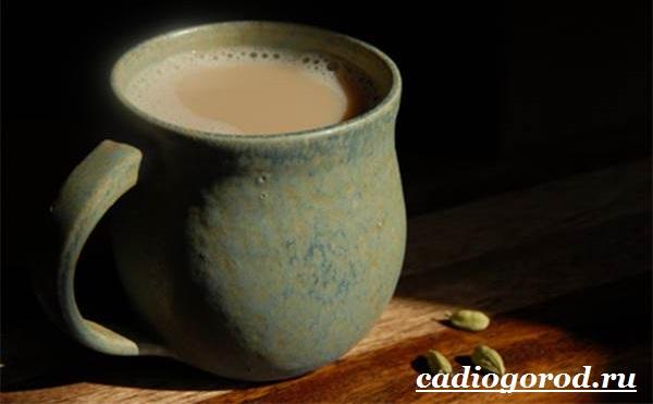 Кардамон-растение-Описание-свойства-выращивание-и-применение-кардамона-11