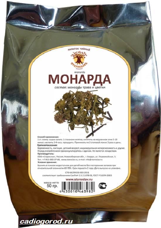 Монарда-цветок-Описание-особенности-виды-и-уход-за-монардой-8