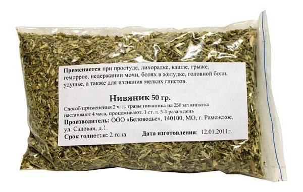 Нивяник-цветок-Описание-особенности-виды-и-уход-за-нивяником-23