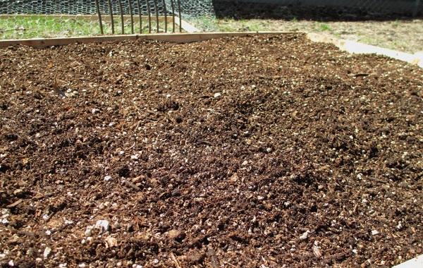 Вермикулит-для-растений-Для-чего-нужен-как-применять-и-сколько-стоит-вермикулит-10