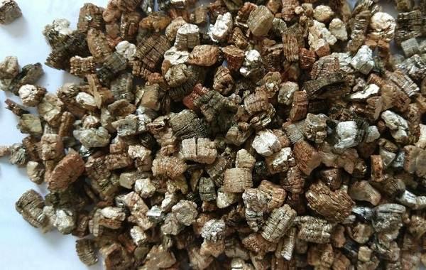 Вермикулит-для-растений-Для-чего-нужен-как-применять-и-сколько-стоит-вермикулит-2