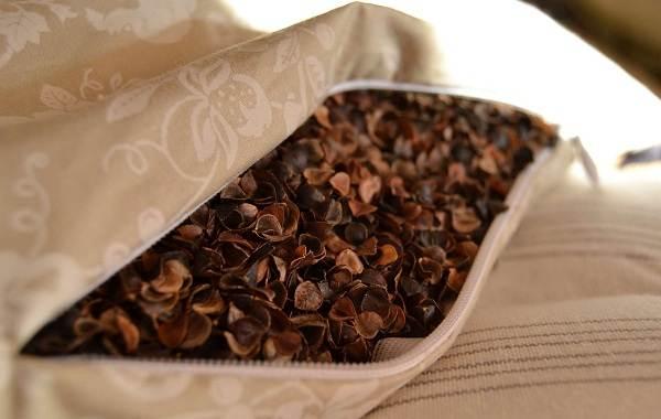 Гречиха-растение-Описание-особенности-виды-сорта-выращивание-и-свойства-гречихи-24