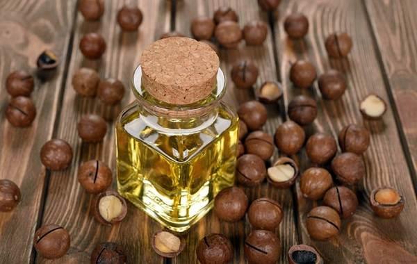 Макадамия-орех-из-Австралии-Свойства-польза-и-вред-происхождение-и-цена-макадамии-9