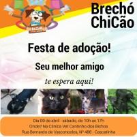 brecho1 (3)
