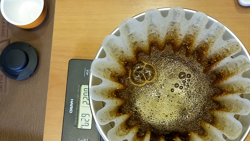 Café Novo Mundo extraído no método Kalita Wave