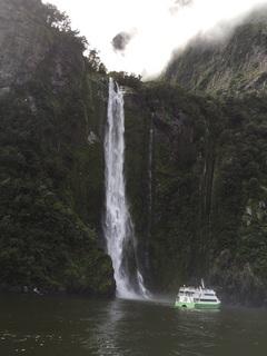 NZ 14.jpg