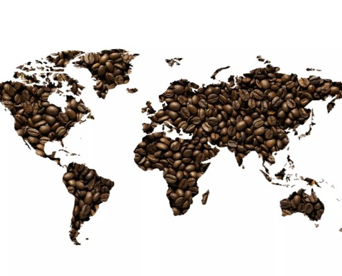 Coffee of the World - Cafe 7