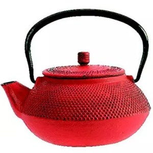 TheKitchenette Shogun Cast-Iron Teapot 0.6L