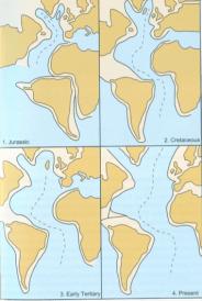 Evoluzione paleogeografica a partire dal Giurassico (da Nicole Grunert)