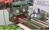 Các FTA mới và cơ hội cho ngành nông nghiệp Việt Nam