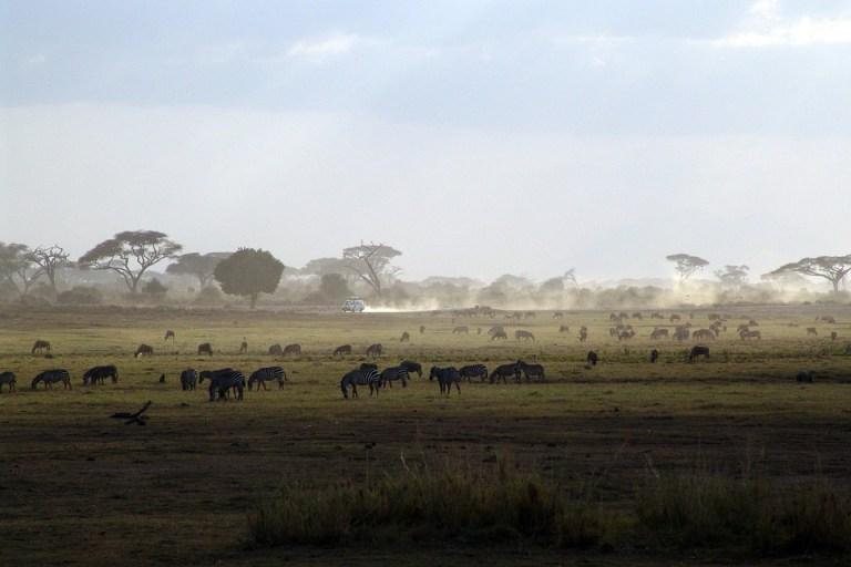 kenyai-climate.jpg?resize=768%2C512