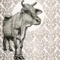 arpi05-vache