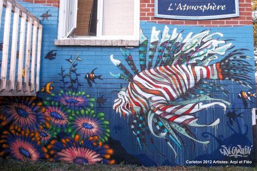 carleton-affiche-murale-maison-des-jeunes-3