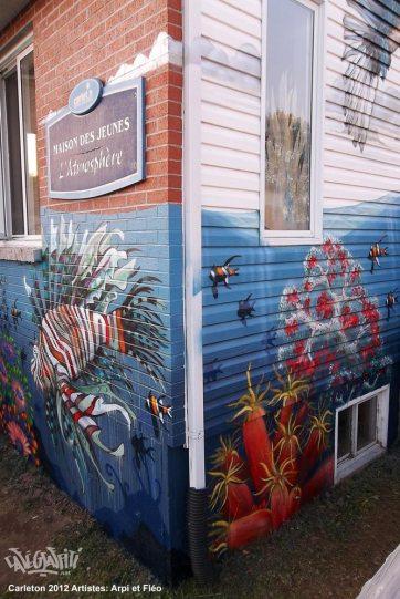 carleton-affiche-murale-maison-des-jeunes-5