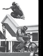 taz_skate_board_roller_blade_roulodome_skateboarding_stphane_julien.png