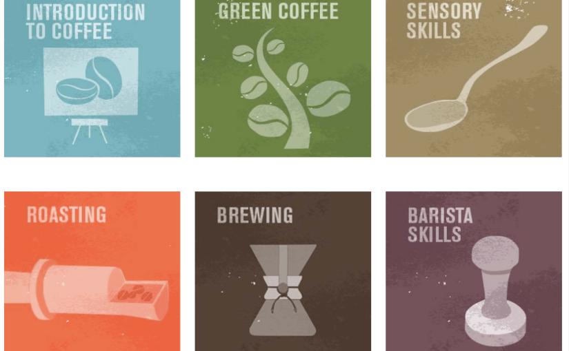 Diplômé(e) en café… ça vous tente?