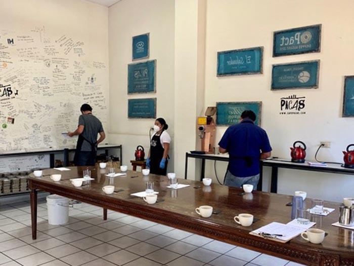 cafe kreyol organic coffee farmers pacas estate finca la esperanza el salvador 02