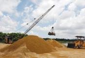 Phó Thủ tướng yêu cầu chống đầu cơ tăng giá cát xây dựng