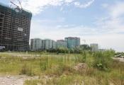Bất động sản 24h: Đua nhau đầu tư vào đặc khu, đất công bị bỏ hoang gây lãng phí
