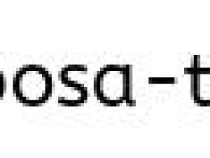 紅茶は、ダージリンとアールグレイをご用意しています。 ストレートでも、ミルクでも、レモンでも。牛乳もご用意しています。