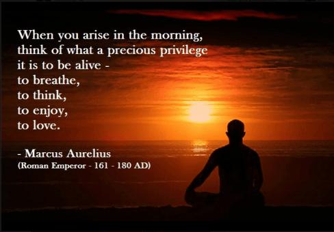 Being grateful -marcus aurelius