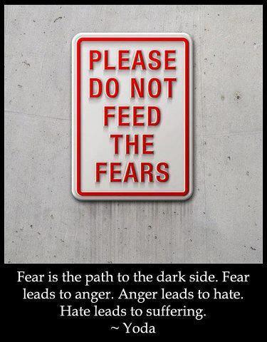 Please Don't Feed The Fearsjpg