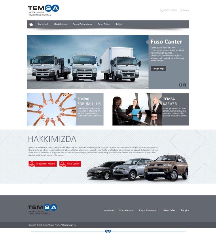 temsa-page