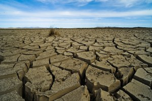 Mongolia climate change and adaptation by Asian Development Bank