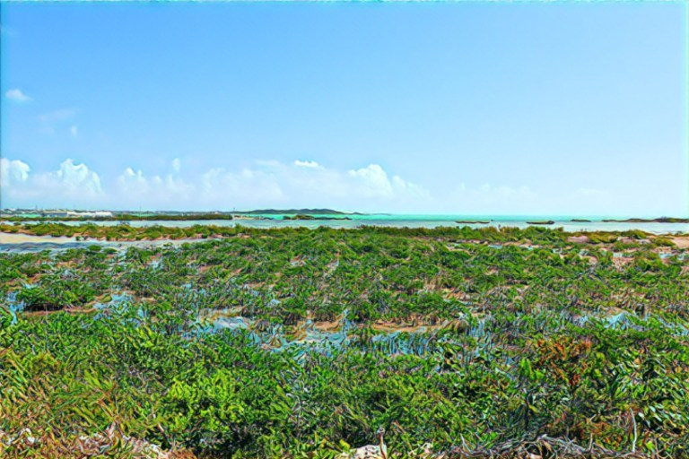 Providenciales: Your Home Base For Island Hopping