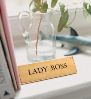 """A photograph of a surface, with books leaning on the left, a glass jar with a plant, a shark decor and a label with the words """"Lady Boss"""" on it."""