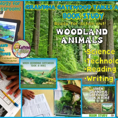 Complete Nonfiction Book Study Unit For Students