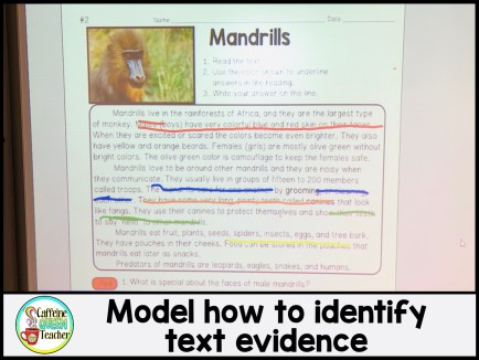 how-to-teach-students-to-cite-text-evidence-mandrills-reading-passage