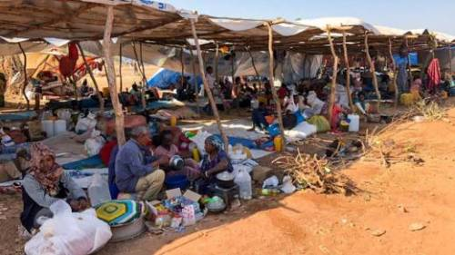 Ethiopians who have arrived in Eastern Sudan are sitting under temporary shelters