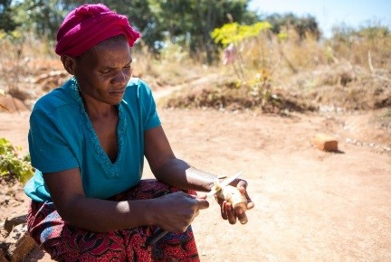 Florence from Zambia turns little fish into a thriving business.