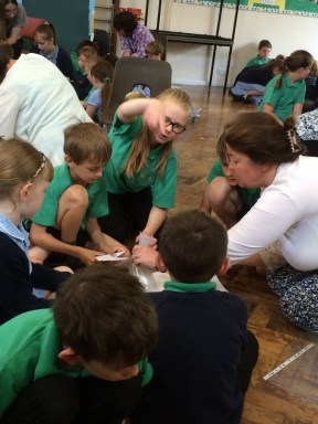 St Amand's primary On the Move activity June 2016j (960x1280) (2)