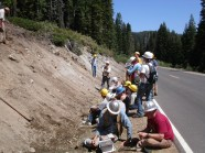 Foresters can learn something anywhere, even on the side of the road.