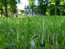 Farmhouse from grass 250w