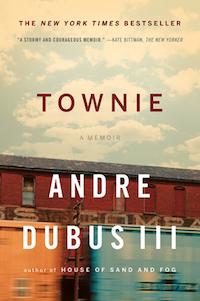Townie book cover.jpg