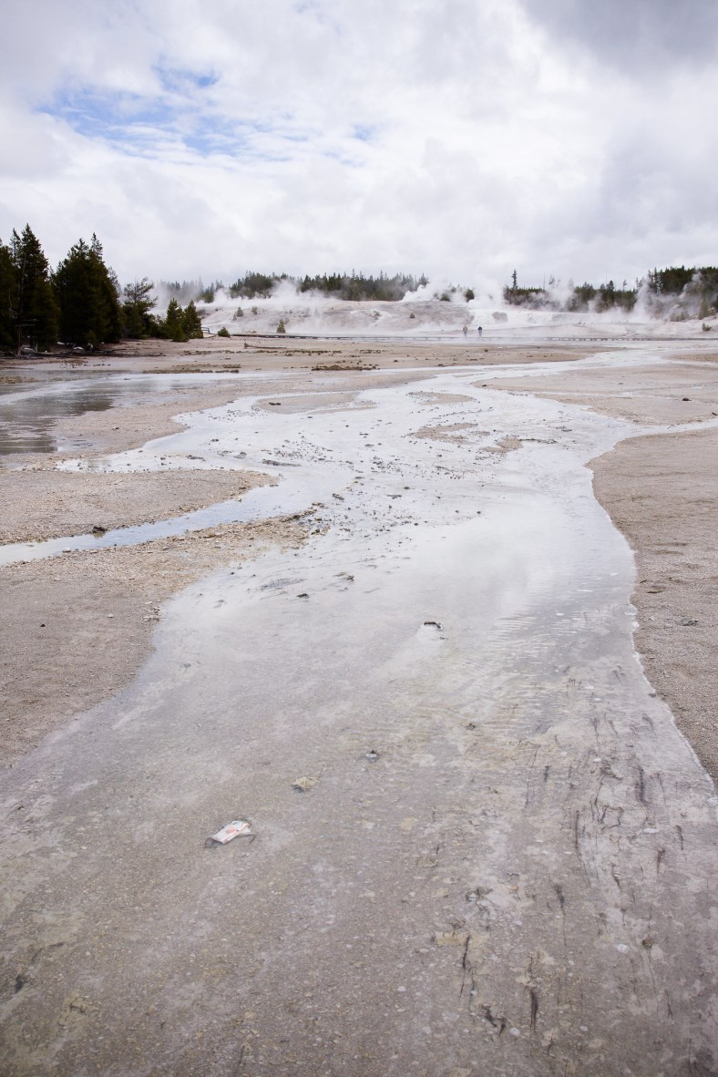 Around the Norris Geyser Basin
