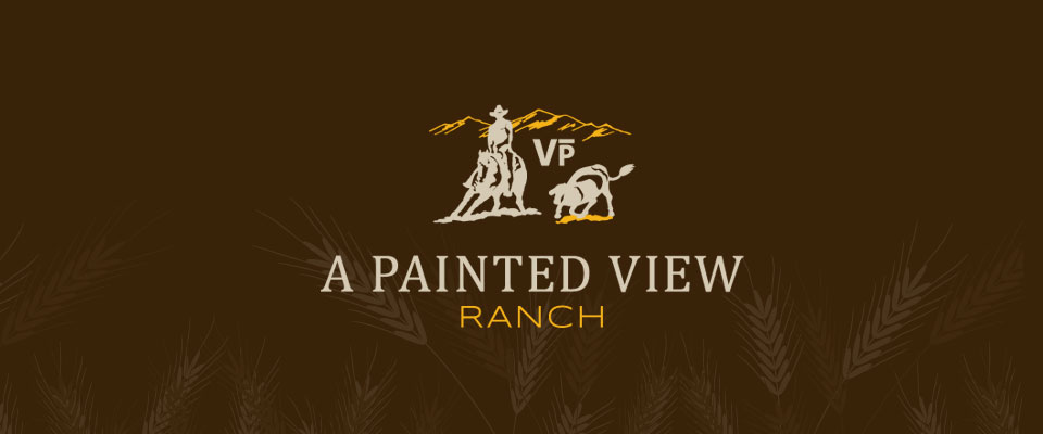 A Painted View Logo
