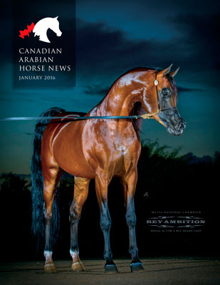 Canadian Arabian Horse News - official magazine of the CAHR