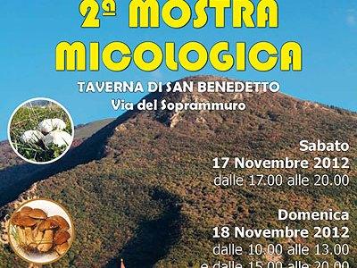 17-18 Novembre: Mostra Micologica