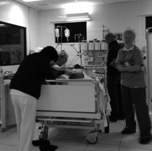 Stabilizing the patient in the ICU. At this moment we are sewing back on an ear.